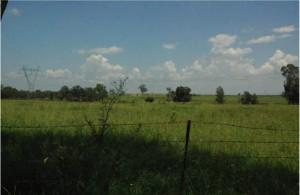 Luddenham Road South - Existing view